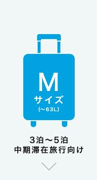 Mサイズ(~63L) 3泊~5泊 中期滞在旅行向け