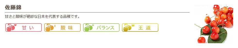 佐藤錦 甘さと酸味が絶妙な日本を代表する品種です。 甘い 酸味 バランス 王道
