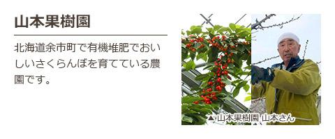 山本果樹園 北海道余市町で有機堆肥でおいしいさくらんぼを育てている農園です。 山本果樹園 山本さん