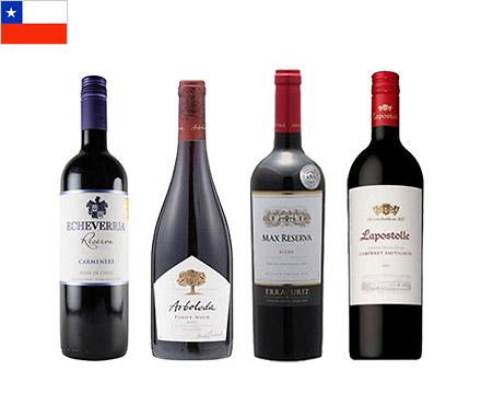 【送料無料】A-styleソムリエが選んだ、チリで注目すべき品種の赤ワイン4本セット