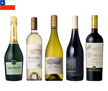 【送料無料】A-styleソムリエが選んだ、チリワインの魅力が詰まった赤白泡5本セット