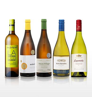 【AMCアプリ限定販売】★ドライマンゴー付き★機内ワイン入り!トロピカルな香りを楽しむワインセット