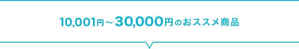 10,001円~30,000円のおススメ商品