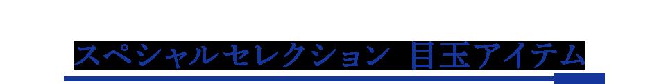 スペシャルセレクション 目玉アイテム